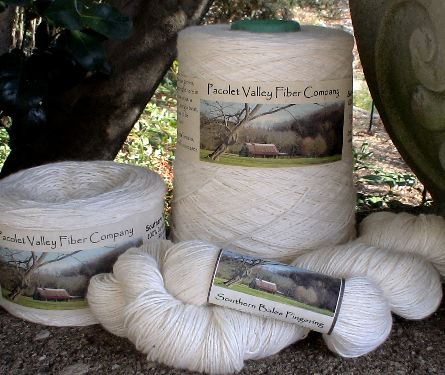 Organic cotton fingering pound cone