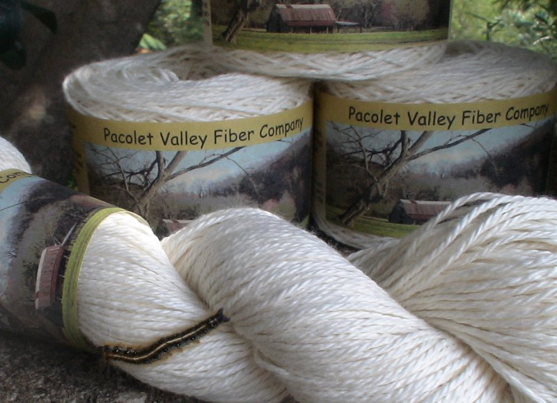 US organic cotton yarn