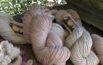 Southern Exposure Yarn